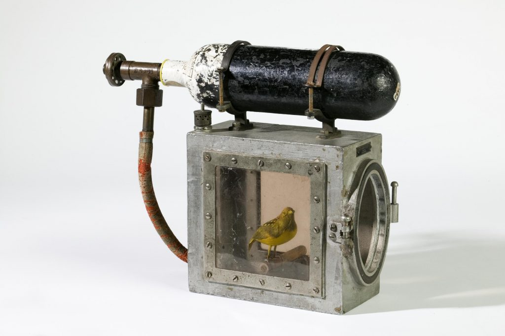 Cage for reviving canary, with oxygen cylinder, made by Siebe Gorman & Co. Ltd, London.